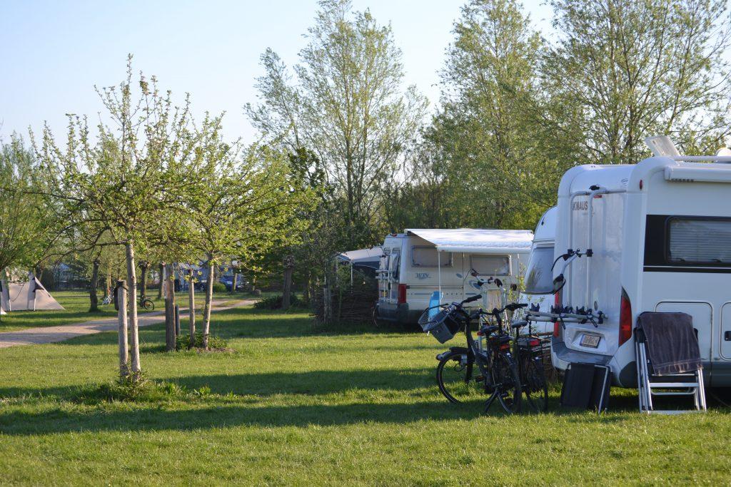 Camping Biesbosch