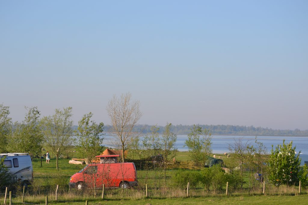 Uitzicht natuur Biesbosch