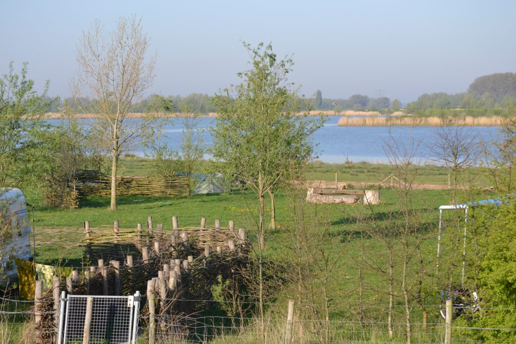 Natuur Biesbosch vakantie